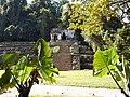 Palenque Entrance.jpg