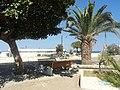 Palma..... - panoramio.jpg