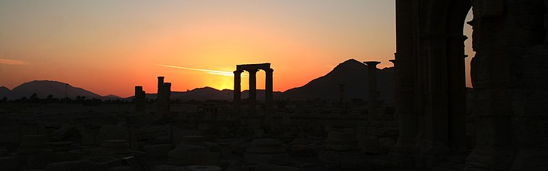 Palmyra Sunset