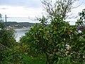 Panorama, Mandarine, Supetarska draga - panoramio.jpg