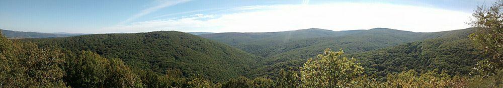 Panorámica del monte Hijedo, un gran bosque mixto entre las provincias de Cantabria y Burgos.