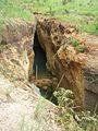 Parque nacional Aguaro-Guariquito 027.jpg