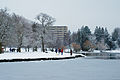 Partly frozen Green Lake Seattle 2008.jpg