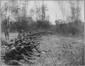 Pasig. Oregon Volunteer Infantry on firing line, March 14, 1899., 03-14-1899 - NARA - 530692.tif