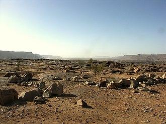 Geography of Mauritania - The Passe de Djouk, near Guerou; an increasingly arid area