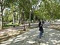 Passeggiata tagore di Balatonfured - panoramio.jpg