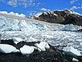 Pastoruri Glacier.jpg