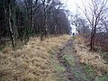 Path, Woodcockair - geograph.org.uk - 298857.jpg
