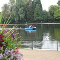 Pedalo on The Serpentine, Hyde Park, London.jpg