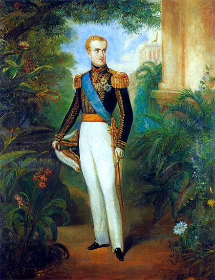 Pedro II at age 20 wearing court dress, 1846 Pedro II of Brazil by Rugendas 1846 original.jpg