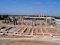 Persepolis 2007 Darafsh (39).JPG