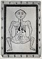 Persian anatomical figure, pregnancy Wellcome V0030899EL.jpg