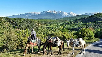Mount Olympus is the highest mountain in Greece and mythical abode of the Gods of Olympus Petra Olympus.jpeg