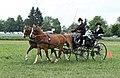 Pferdesportveranstaltung in Seifersdorf (Jahnsdorf) ..2H1A7058WI.jpg
