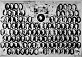 PhC 31 NC House of Representatives (15754785681).jpg