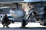 Phase II Operational Readiness Exercise (8473425589).jpg