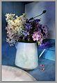 Phlox pastels en blanc et bleu.jpg