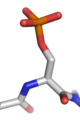 Phosphorylated serine.png