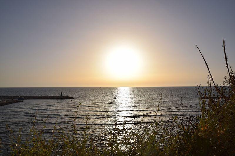 חוף ארלוזורוב תל אביב