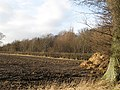 Ploughed field, Forgandenny - geograph.org.uk - 690956.jpg