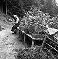 Podgoršek Frančiška plete košare (dolgo let je kuhala oglje), Resnik 1963 (2).jpg