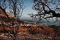 Pogled na Makarsku.jpg
