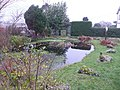 Pond at Home Farm, Weston, Dorset - geograph.org.uk - 648390.jpg
