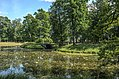 Ponds of the New Garden in Tsarskoe Selo 01.jpg