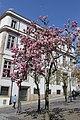 Porto IMG 2295 (16871179488).jpg