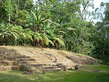 A low stairway rising to the left from a flat grassy area. The top of the stairway is blocked by thick tropical vegetation.