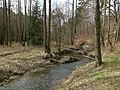Prießnitz dresdner heide 2021-03-28 2.jpg