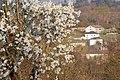 Primavera en Bóveda - panoramio.jpg