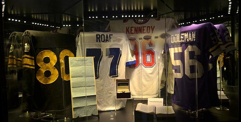 File:Pro Football Hall of Fame (11282691144).jpg