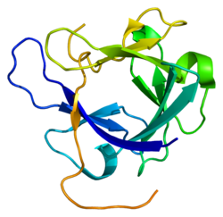 Protein FGF19 PDB 1pwa.png