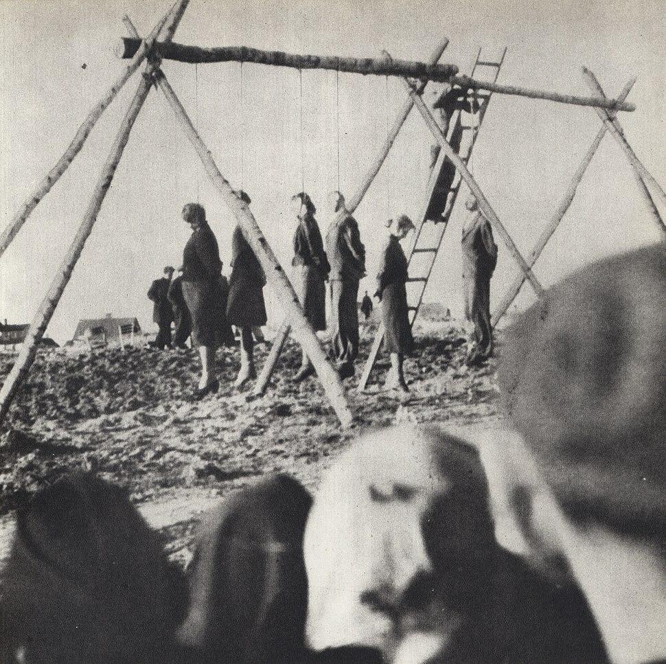 Public execution of 54 Poles in Rożki (1942)