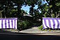 Purple and white curtain 20170527-02.jpg