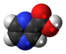 Space-filling model of the pyrazinoic acid molecule