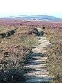 Quakers Causeway - geograph.org.uk - 40056.jpg