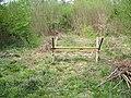 Queenmeadow Copse, Mottisfont Estate - geograph.org.uk - 424529.jpg