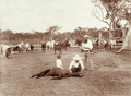 Queensland State Archives 2475 Booral horse station c 1898.png