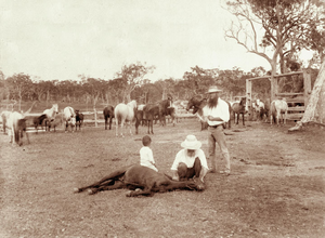 Booral, Queensland - Booral horse station, circa 1898
