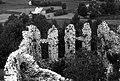 Rabsztyn, Zamek w Rabsztynie - fotopolska.eu (173539).jpg