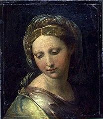 Perla di Modena