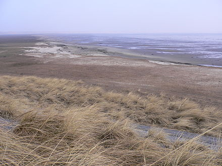Wadden Sea is a Transboundary Ramsar Site covering 13 Ramsar sites in Denmark, Germany and the Netherlands Ramsar transboundary Site Wadden Sea.jpg