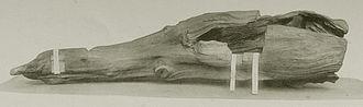Japanese incense - Ranjyatai, a historical kyara wood dating to the 10th century CE, kept at the Shōsōin treasury in Nara