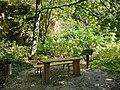 Rastplatz im Wacholdertal - panoramio.jpg