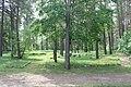 Ratnycia Jewish Cemetery 2016 (1).JPG