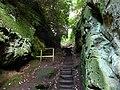 Ravine at Hawkstone Park - geograph.org.uk - 1502265.jpg