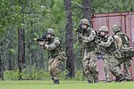 Red Falcons team up with British 3 PARA 140722-A-DP764-276.jpg