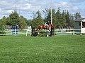Relative Horse Riding 2 Equestrian (5128131438).jpg